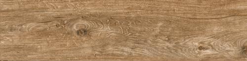 Gạch gỗ Ấn Độ (20x120cm)5601