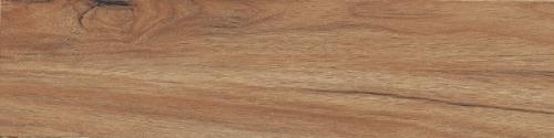 Gạch gỗ Ấn Độ (20x120cm)6201