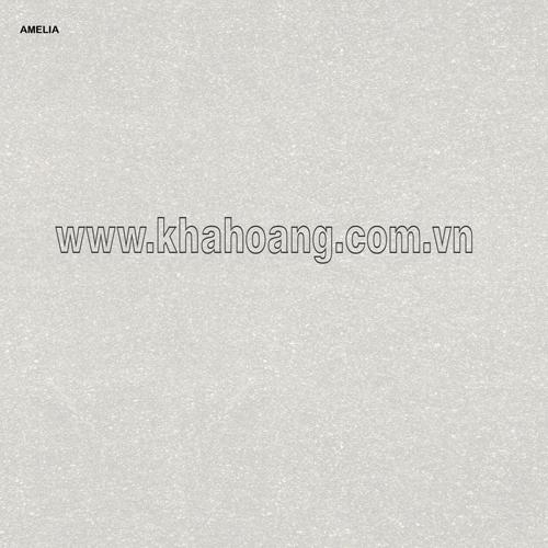 (80X80)AMELIA